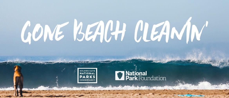 Featured gone beach cleanin journal
